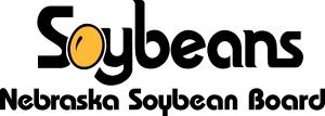 NSB 2 Color Logo